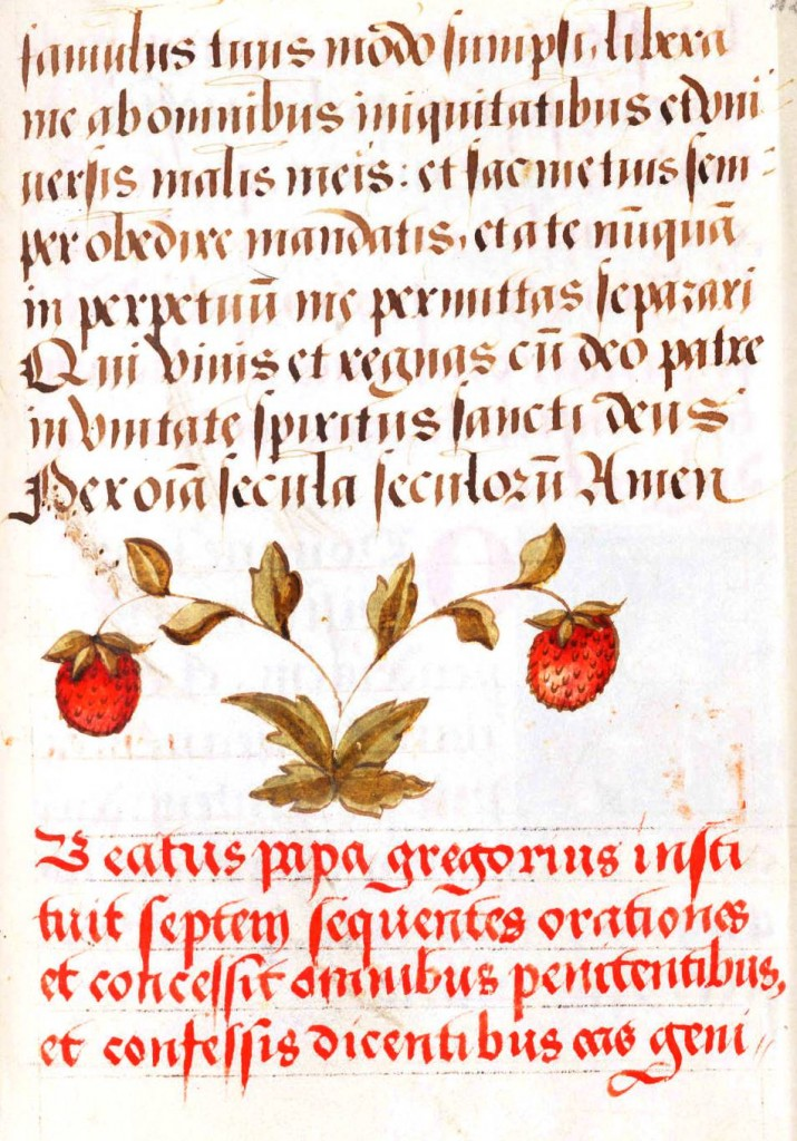 Botanical - Fruit -  Medieval - Strawberries