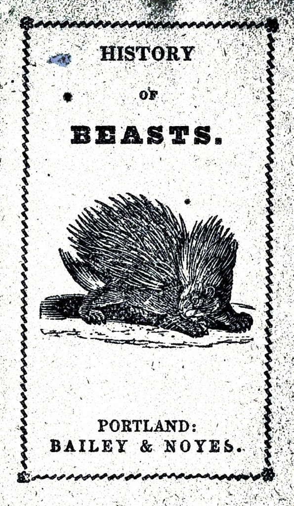 Animal - Porcupine - History of Beasts