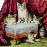 Art - Advertisement - Kittens