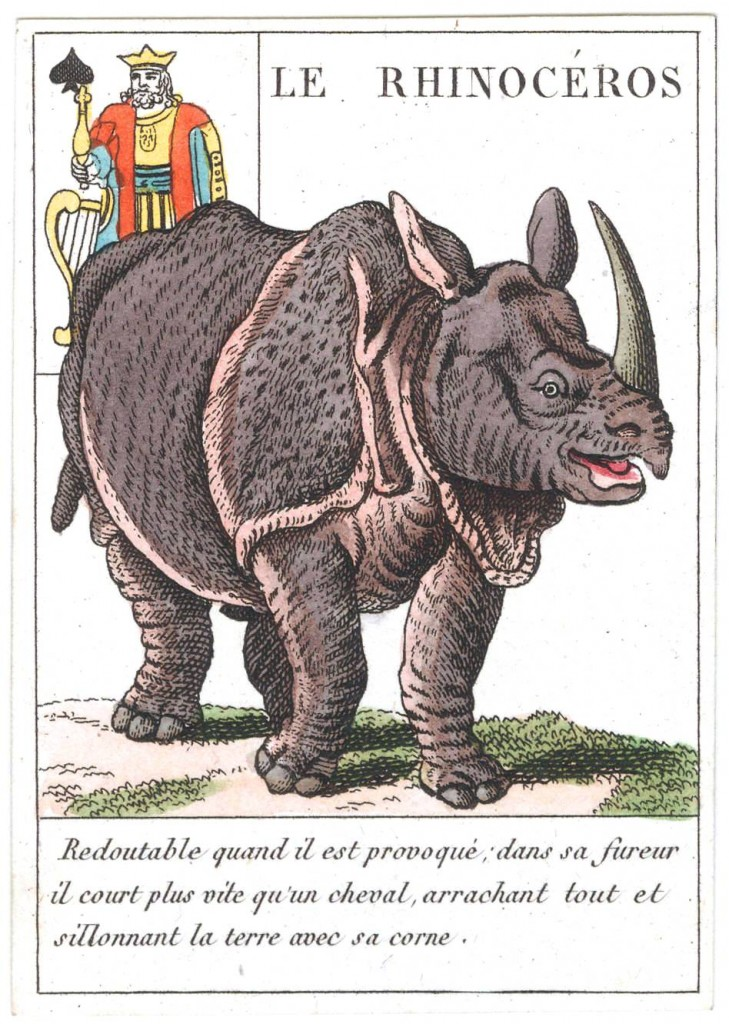 Entertainment - Playing card - King of Spades - Rhino