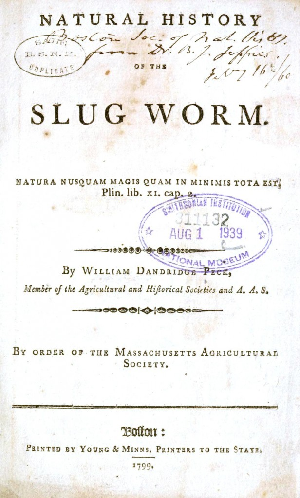 printed matter title page natural history of the slug worm