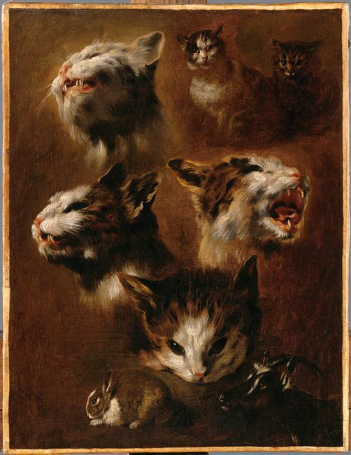 Animal - Animal head - Cat head, rabbit and a goat head