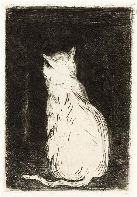Animal - Cat - White cat pen and ink