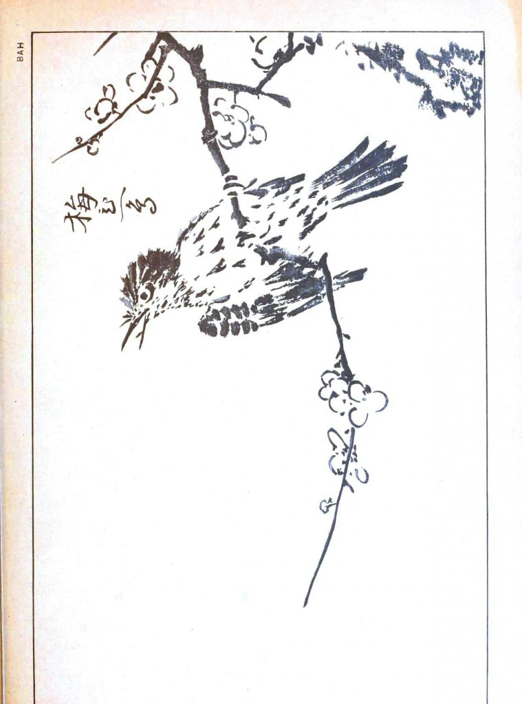 Art - Asian - Japanese brush painting of bird on plum blossom