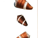 Animal - Sea shell - Brown and white