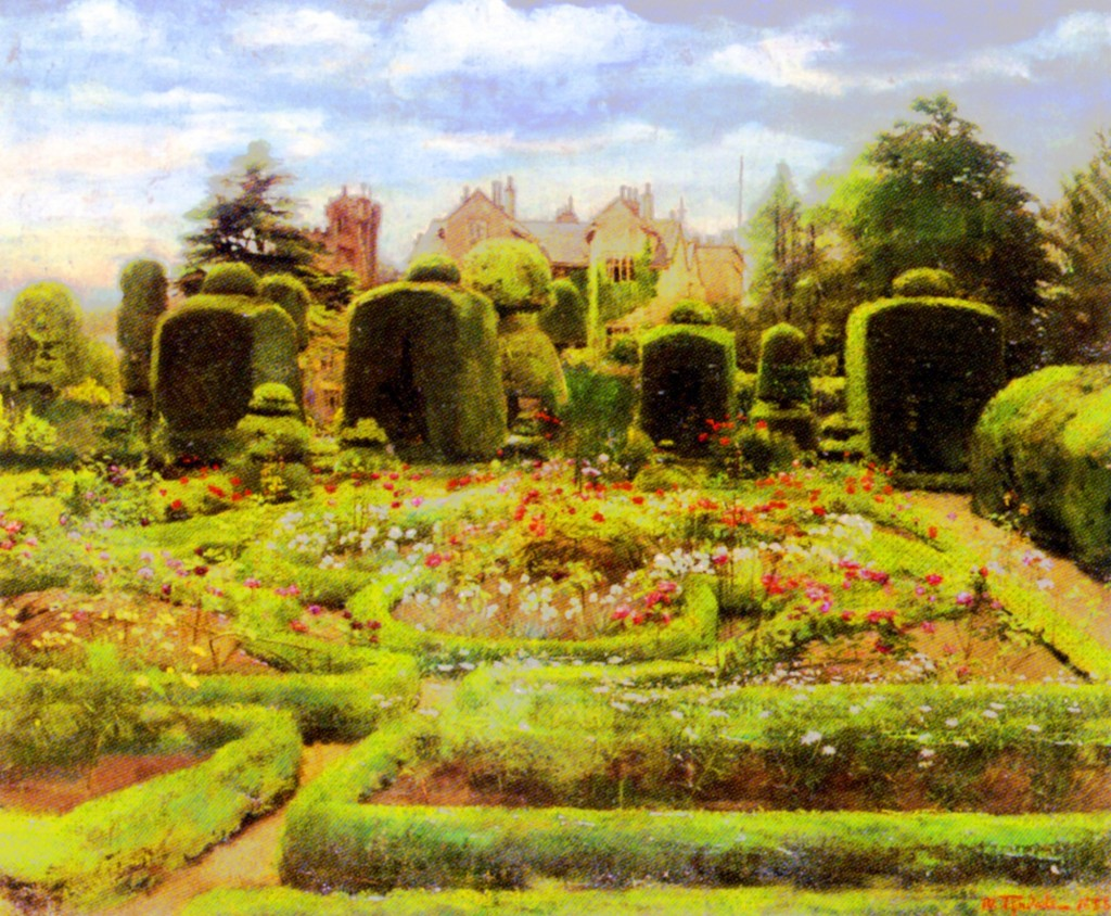 Landscape - Illustration - Topiary garden