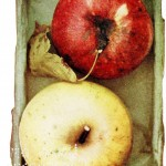Botanical - Fruit - Apples, Smokehouse