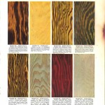 Color - Multi - Wood stains 3