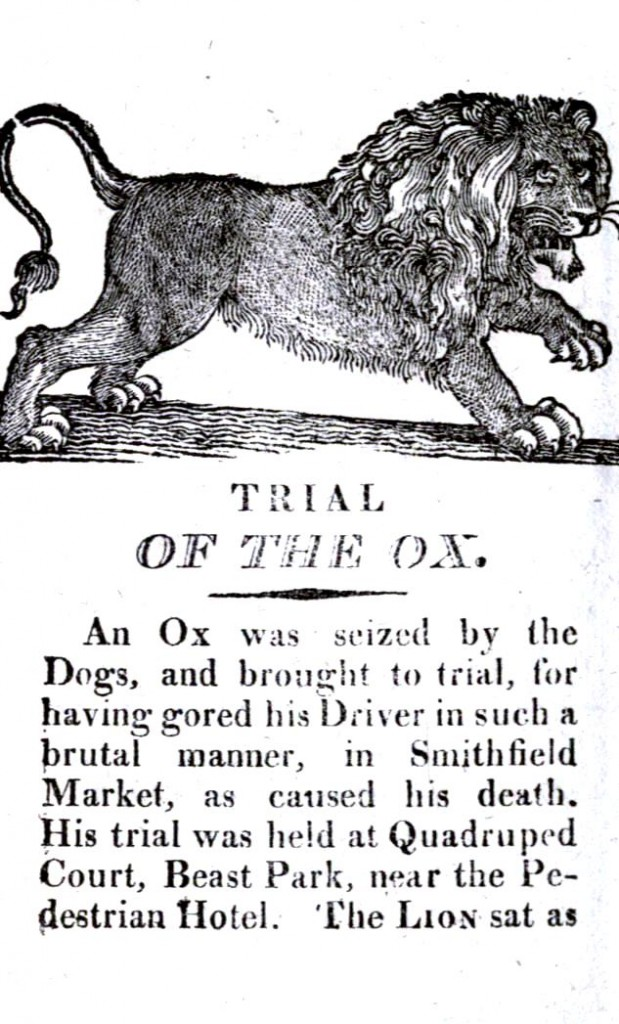 Animal - Animal acting human - Trial of an ox killing man - (2)