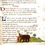 Animal - Bear - Medieval - Bear eating honey
