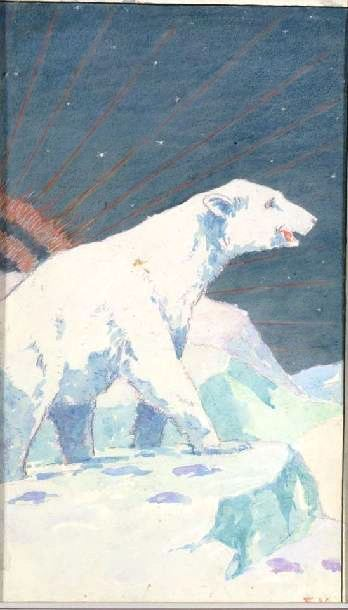 Animal - Bear - Polar Bear, on snow