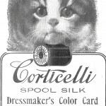 Animal - Cat - Cat selling thread