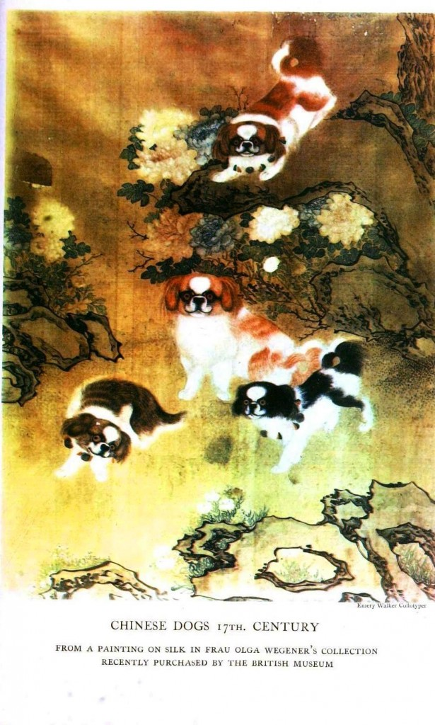 Animal - Dog -  Asian art
