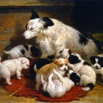 Animal - Dog - Basket of puppies and mother