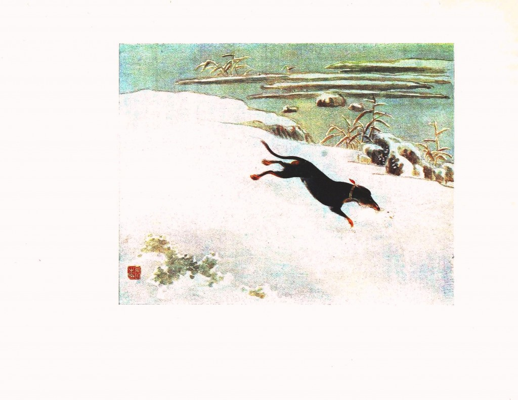 Animal - Dog - Dog chasing rabbit in snow, Asian