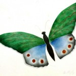 Animal - Insect - Butterfly, watercolor
