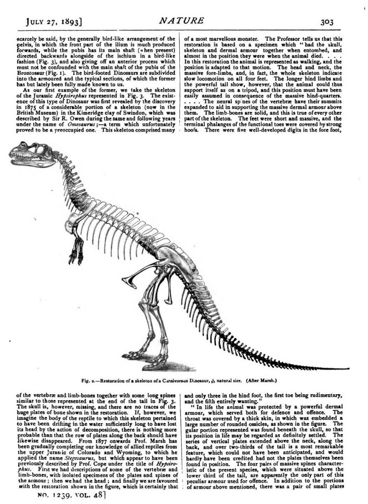 Animal - Reptile - Dinosaur skeleton