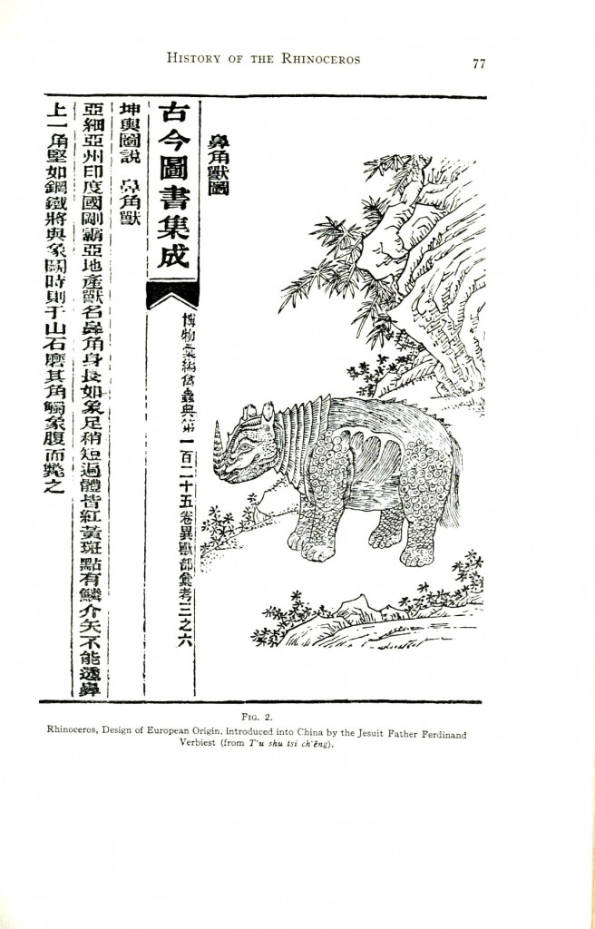 Animal - Wild - Rhino - Asian woodblock