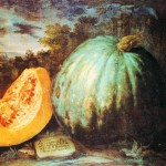 Botanical - Painting - Fruit - Pumpkin