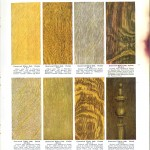 Color - Multi - Wood stains 5