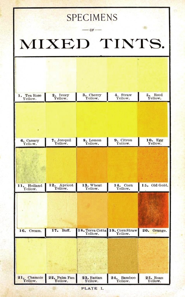 Color - Multi - color - Hints on tints 1, yellow