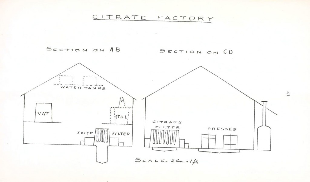 Design - Architectural - Citrate Factory 2