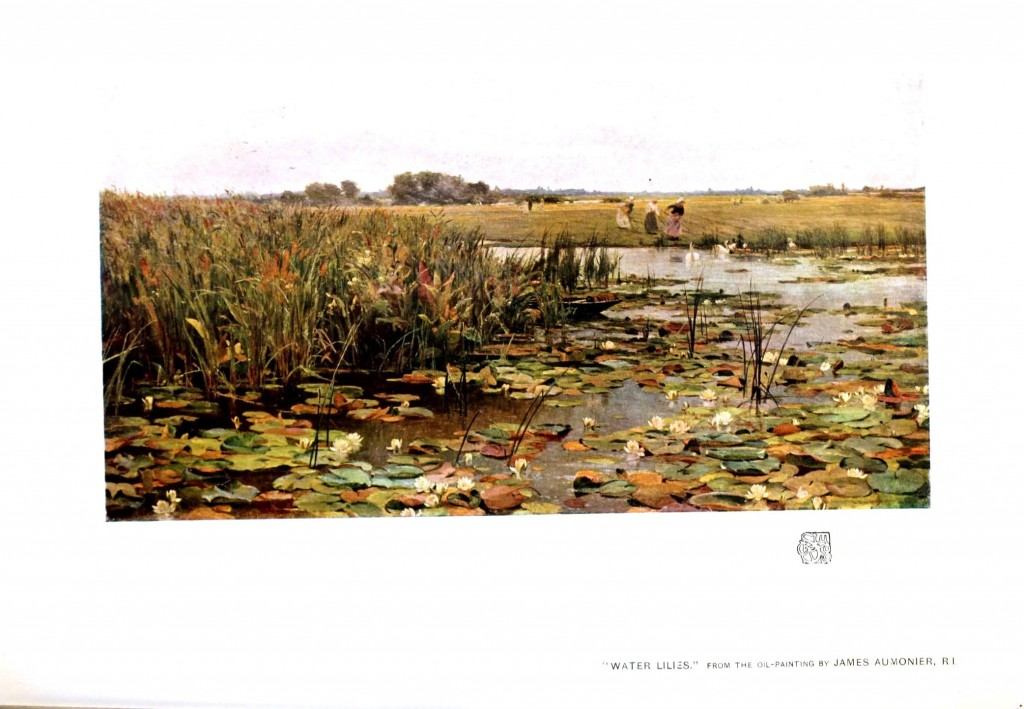 Landscape - Paintings - Water lillies