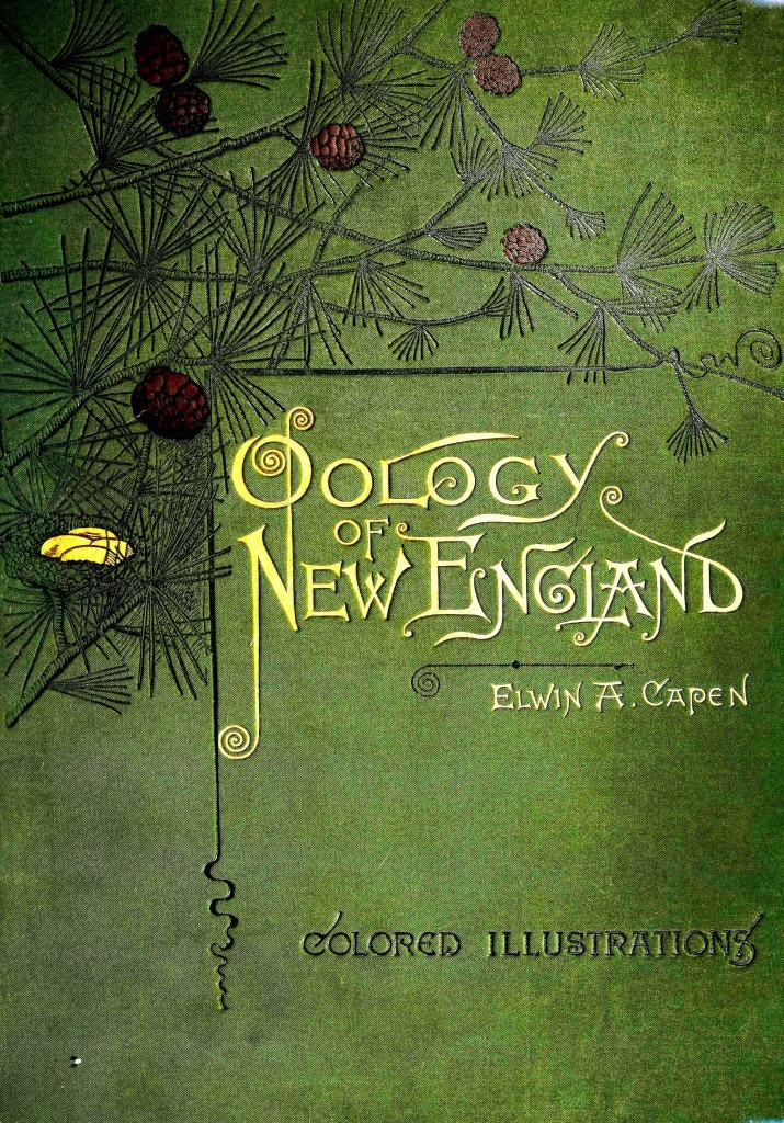 Printed Matter - Book Cover - Oology of New England