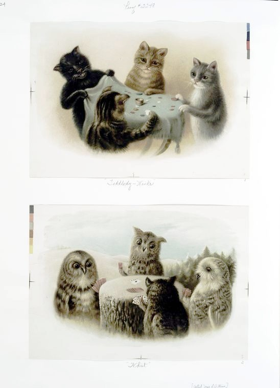 Animal - Animal acting human - Cat - Cats Playing Cards, Owls playing tiddlywinks