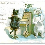 Animal - Animal acting human - Cat - Cats playing the piano