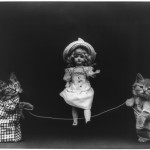 Animal - Animal acting human - Cat - Photo - Kittens playing jump rope with doll
