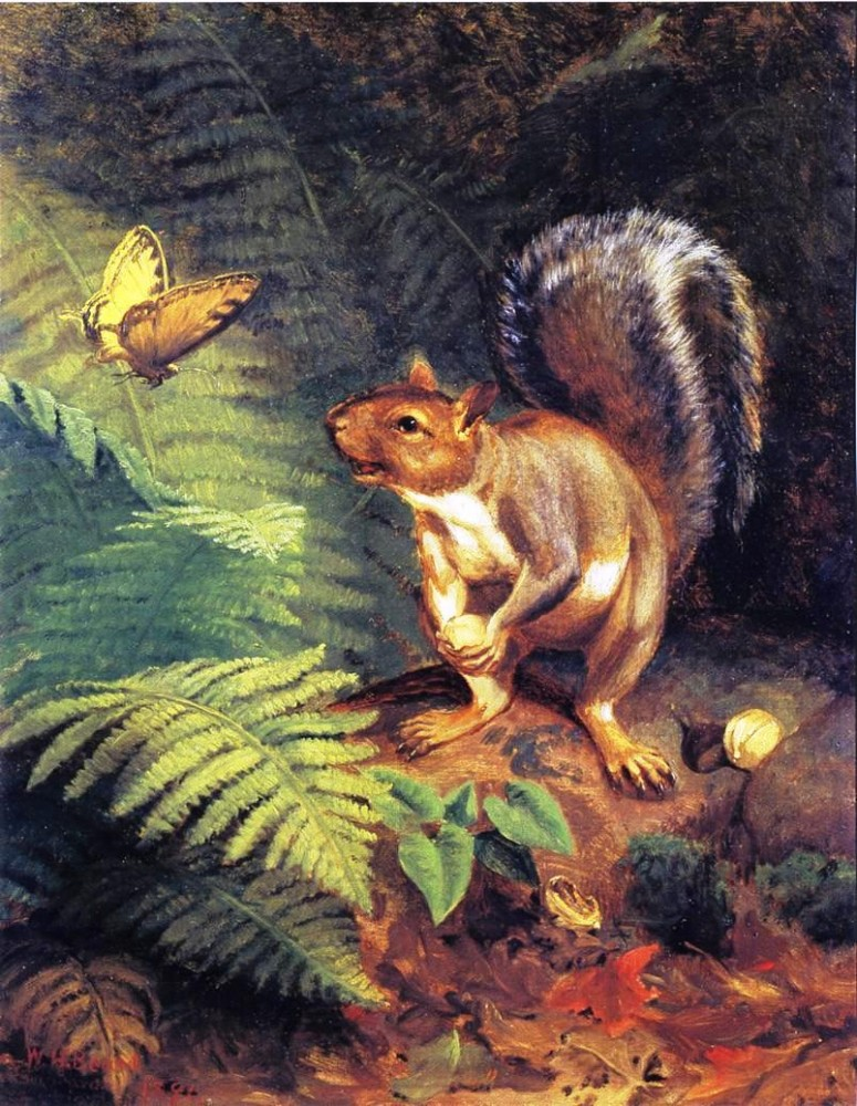 Animal - Animal acting human - Woodland - Squirrel, butterfly, how-beautiful