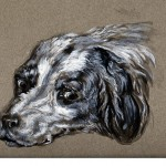Animal - Animal head - Dog - Pastel Portrait