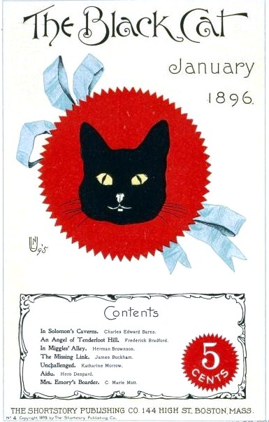 Animal - Cat - Black Cat Graphic 2