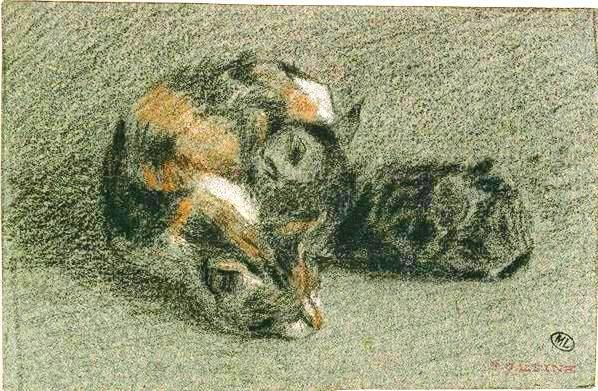 Animal - Cat - Drawing - Calico cat and kitten napping