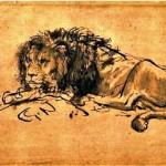 Animal - Cat - Lion - Rembrandt