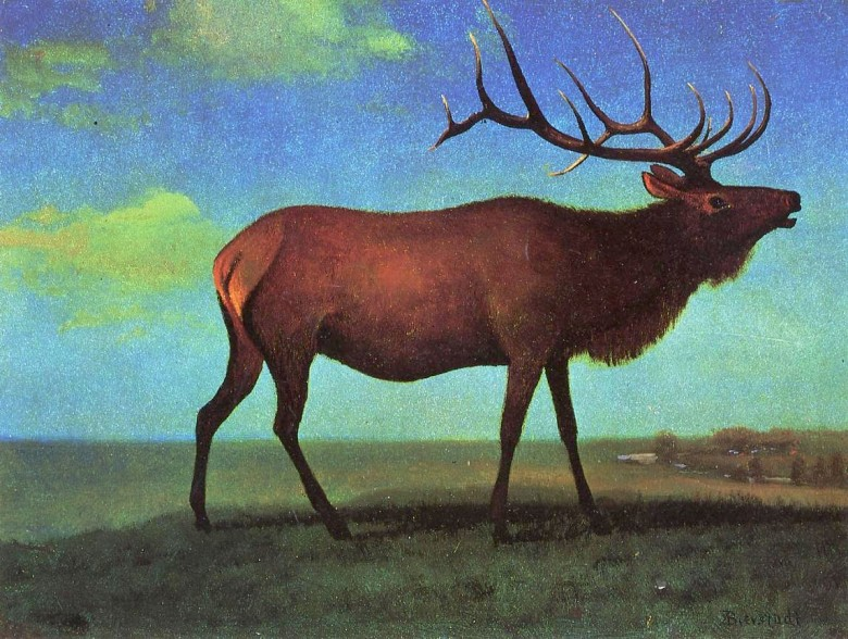 Animal - Deer - Painting - Elk - Bierstadt