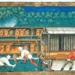 Animal - Insect - Bees - Medieval - Apiculture, color