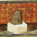 Animal - Insect - Bees - Medieval - Hives - French manuscript