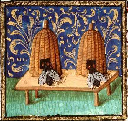 Animal - Insect - Bees - Medieval - Two bee hives, fleur de lys-type background