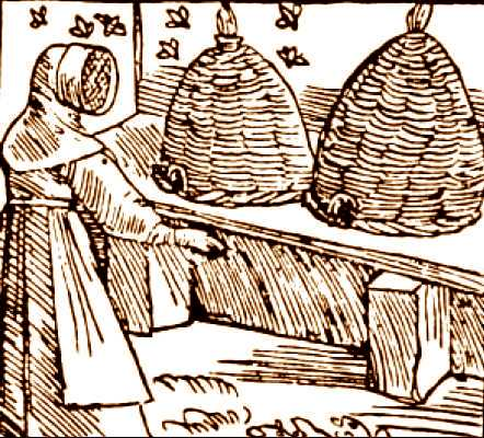 Animal - Insect - Bees - Medieval - bee hives, illustration