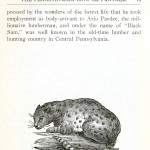 Animal - Leopard- Extinct Pennsylvania Animals