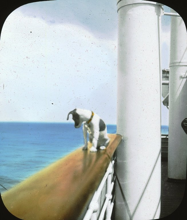 Animal - Photo - Dog on steamship
