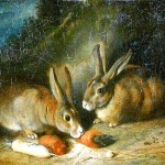 Animal - Woodland - Rabbit - Painting