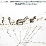 Animal - Zebra - Sketching in the sunlight