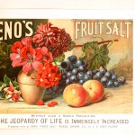 Art - Advertisement - Botanical - Fruit