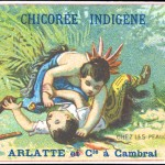 Art - Advertisement - Chicoree Indigene