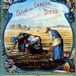 Art - Advertisement - Victorian seed 2