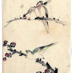 Art - Asian - Animal - bird - japanese - among branch with blossoms