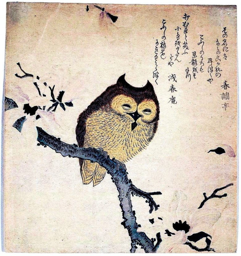 Art - Asian - Animal - bird - owl - Japanese - woodcut